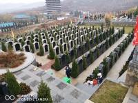 墓地慈航园